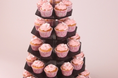 Cupcakes Axner_HR1